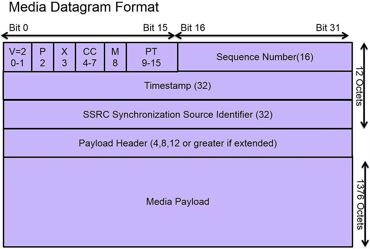 Media Datagram Format