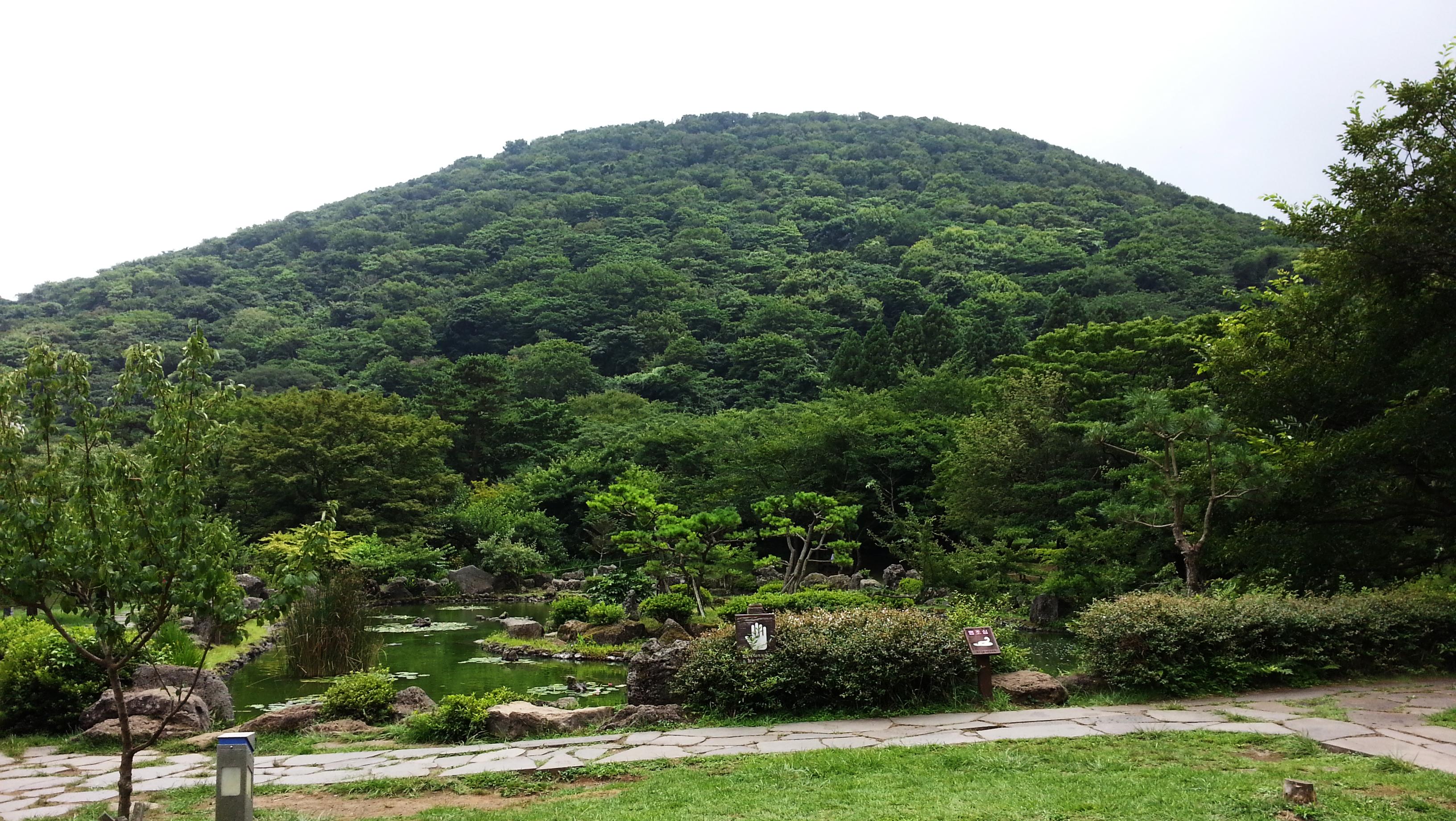 9. 절물오름(절물휴양지 연못에서 보기)