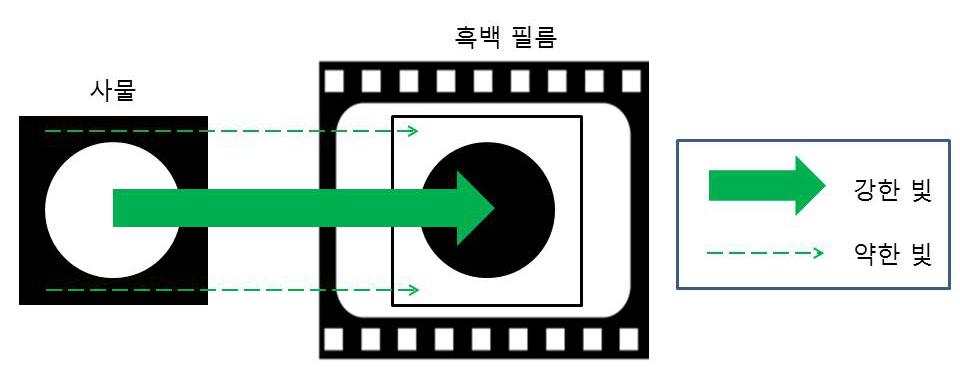 그림 1. 흑백 필름의 빛에 대한 반응