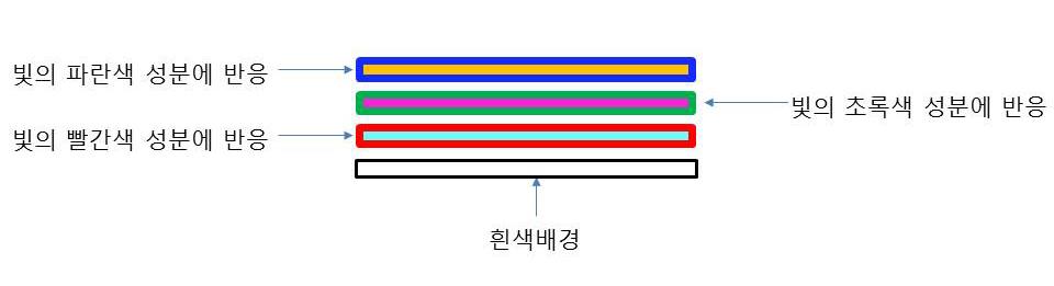 그림 5. 컬러 인화지의 구조
