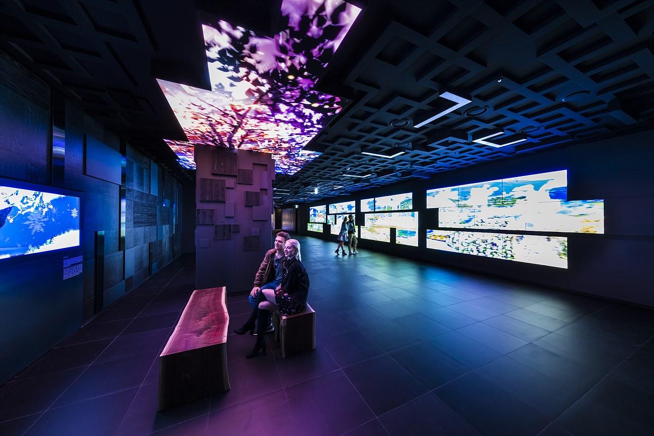 지하 2층에 위치하며 한국 사계절의 아름다운 변화를 표현한 미디어 아트인 '수호목'