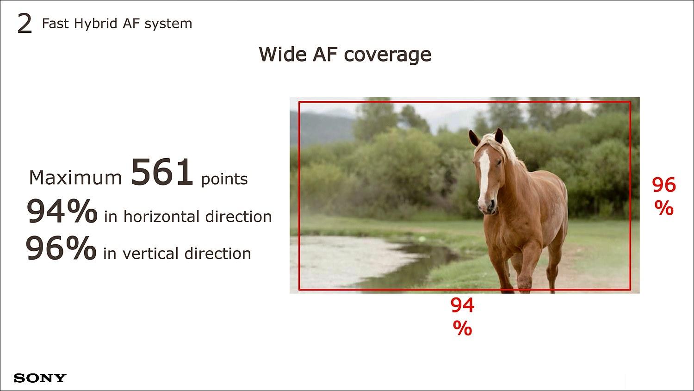 총 561개 포인트의 위상차 검출 AF 센서는 화면 너비 및 높이의 각 94%, 96%에 달하는 영역을 감지한다