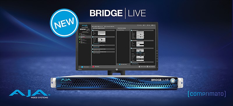 1. BRIDGE_LIVE